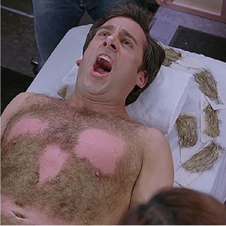 Steve Carell | Hairy Male Celebrities | Nads for Men Hair Removal